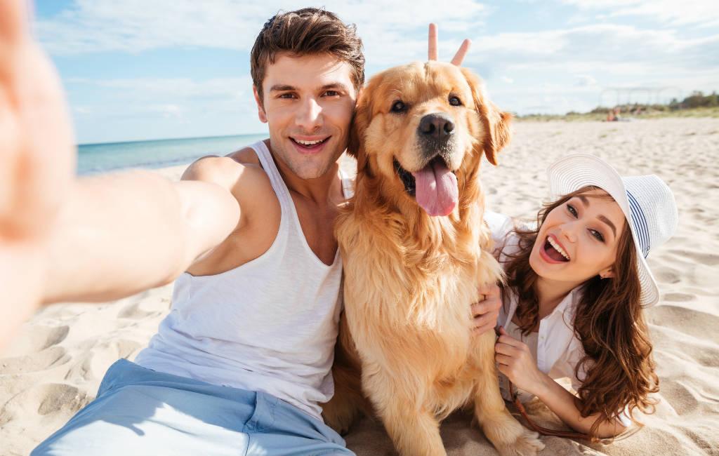 Overzicht Hondenstranden In Spanje