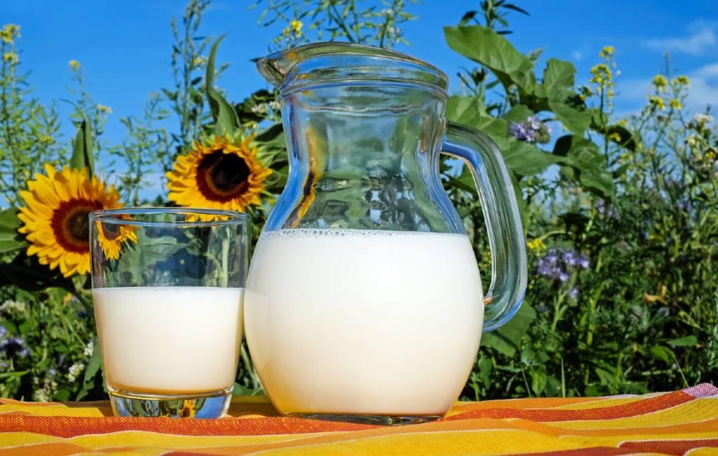 Het Gebruik Van 'leche' In De Spaanse Taal